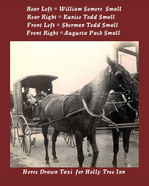 Horses and a horse drawn taxi with passengers