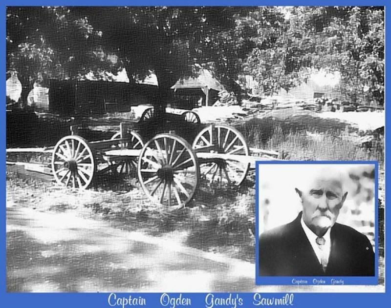 Wagon and the sawmill of Ogden Gandy