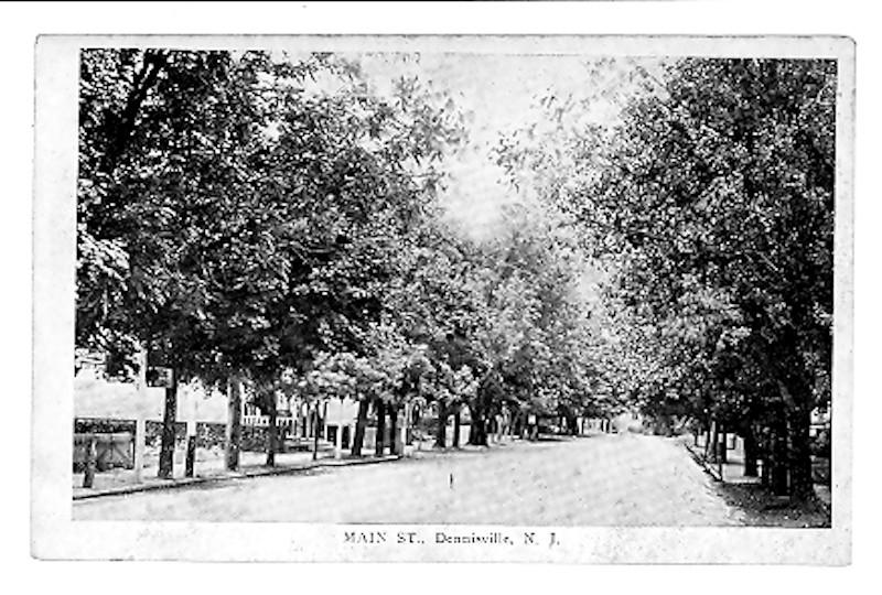 Tree lined view of Main Street in Dennisville