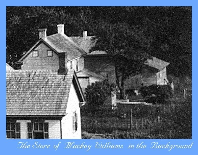 Photo of rooftops with Mackey Williams store in background
