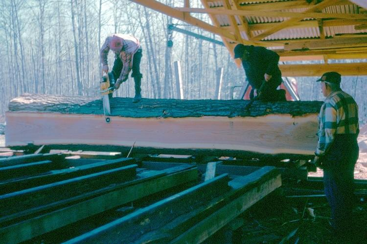 Men sawing off bark on a tree at Brewers sawmill