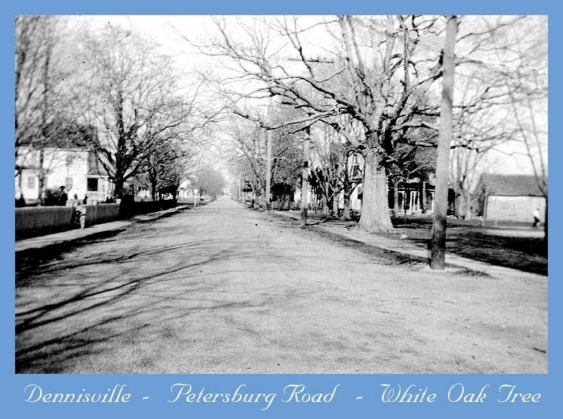 Petersburg Road in Dennisville with tree lined street