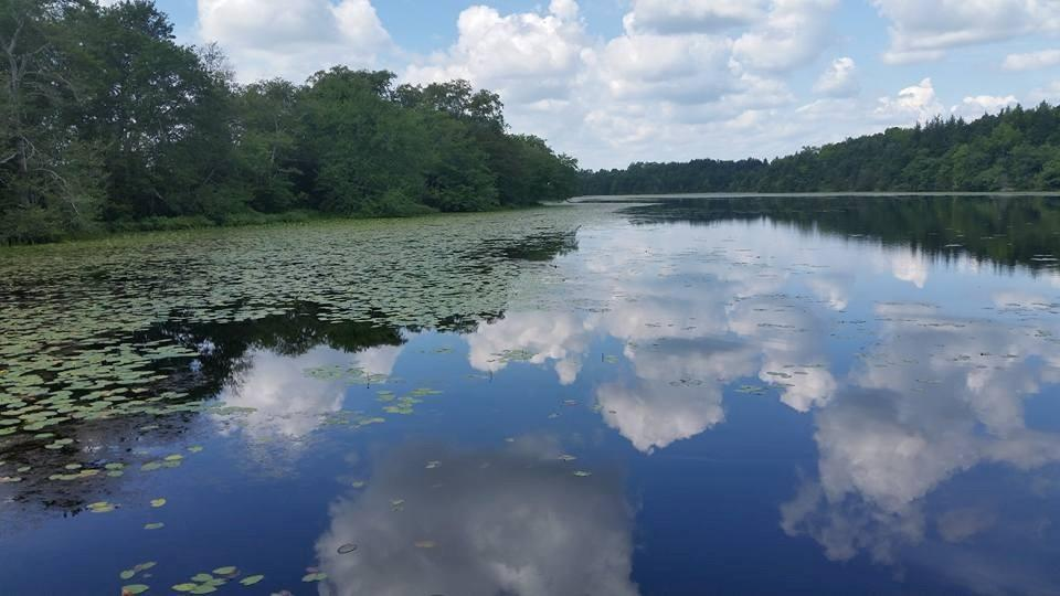 View of Magnolia lake with clouds and lilypads
