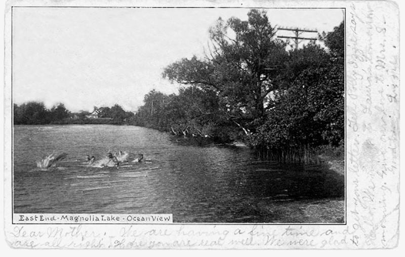 Old postcard of people swimming in Magnolia Lake