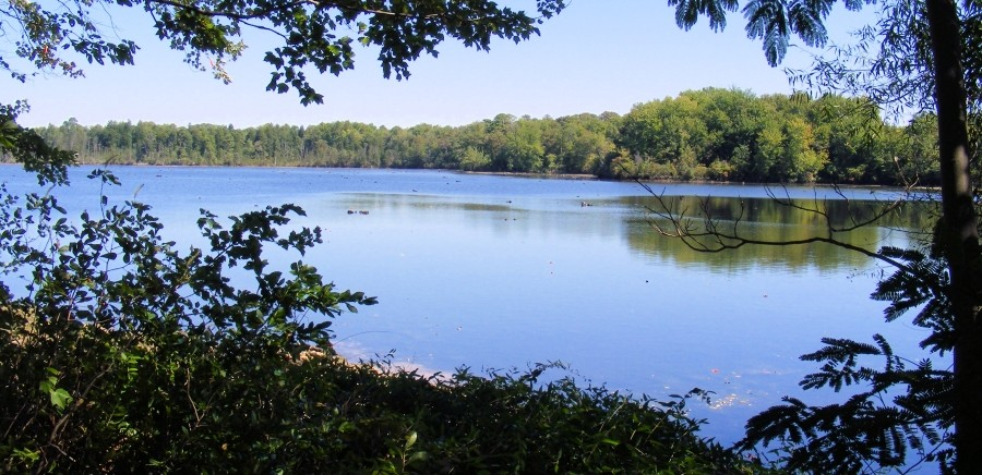 Ludlams Pond view