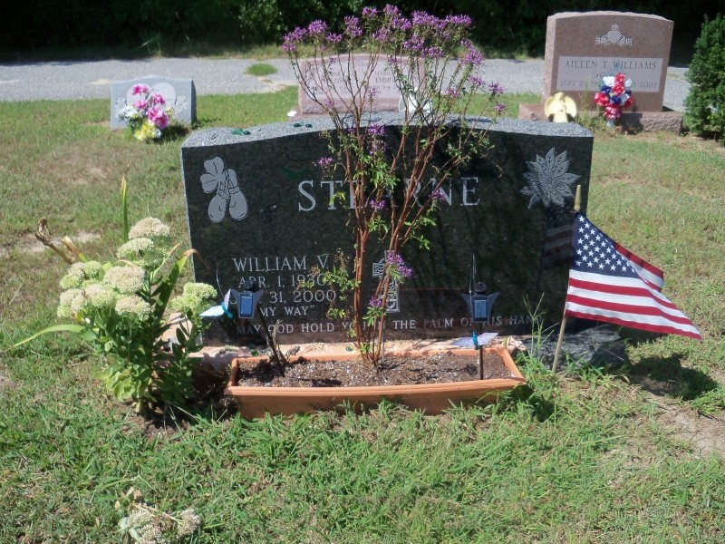 William Steerne marker