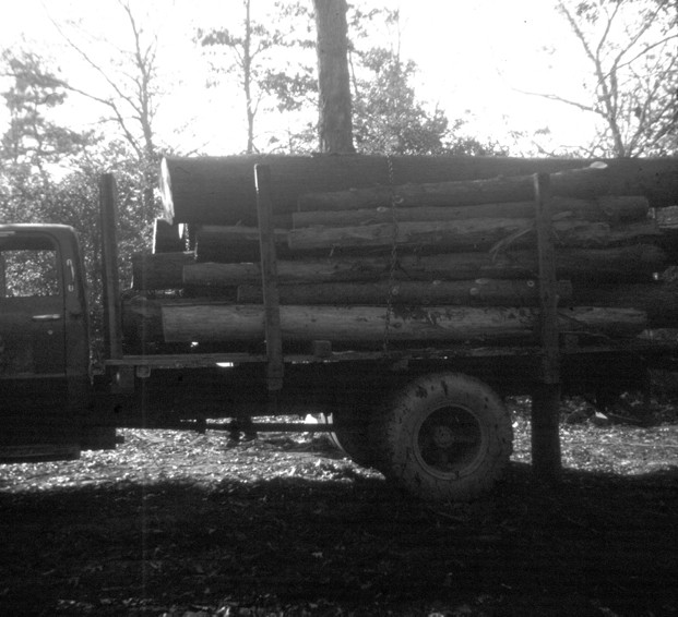Old truck loaded with logs that are tied down with chains