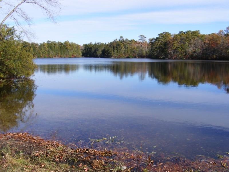 East Creek view 6