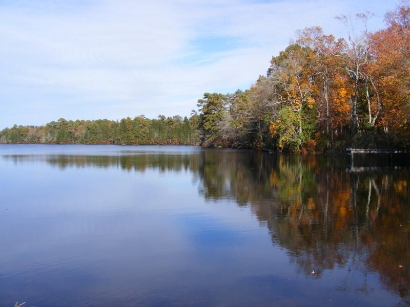 East Creek view 4