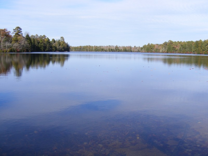 East Creek view 1