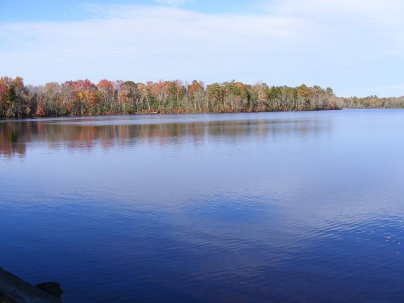 Pickle Lake view 2