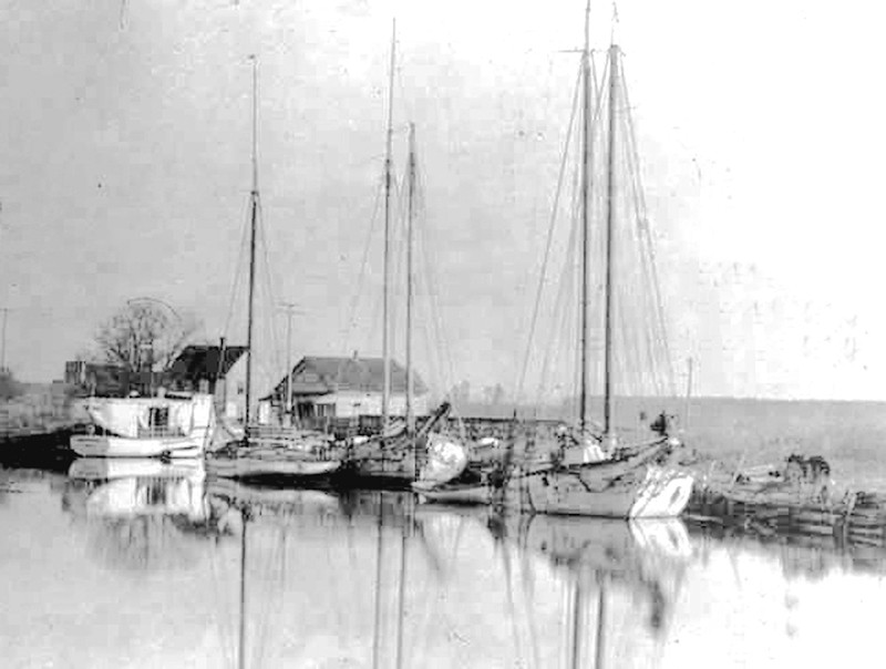 Sailboats at Dennis Creek Landing